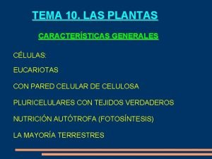 TEMA 10 LAS PLANTAS CARACTERSTICAS GENERALES CLULAS EUCARIOTAS