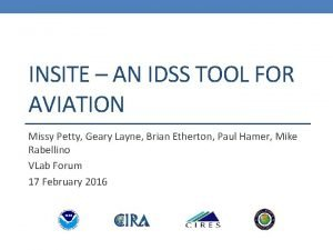 INSITE AN IDSS TOOL FOR AVIATION Missy Petty