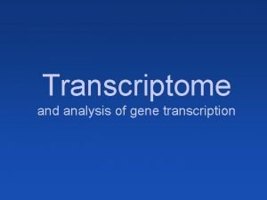 Transcriptome and analysis of gene transcription Gene expression