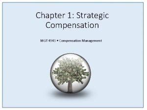 Chapter 1 Strategic Compensation MGT 4543 Compensation Management