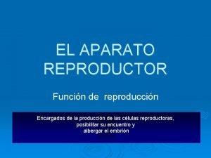 EL APARATO REPRODUCTOR Funcin de reproduccin Encargados de