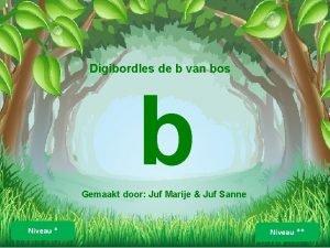 Digibordles de b van bos b Gemaakt door