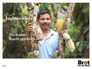 Indonesien BioKakao macht glcklich Seite 22 Indonesien Flche