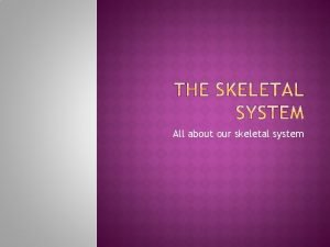 All about our skeletal system Bones help you
