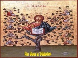 A Liturgia nos fala da UNIDADE profunda dos