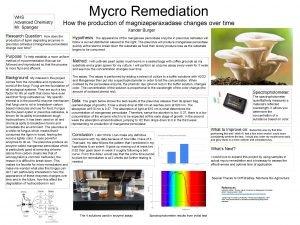 WHS Advanced Chemistry Mr Spangler Mycro Remediation How