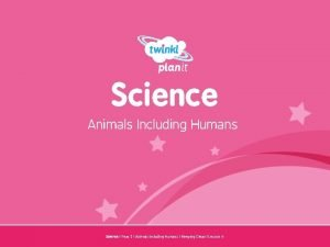 Science Animals Including Humans Year One Science Year