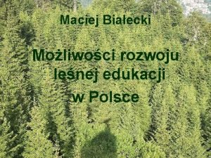 Maciej Biaecki Moliwoci rozwoju lenej edukacji w Polsce