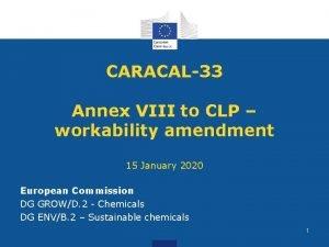 CARACAL33 Annex VIII to CLP workability amendment 15