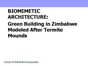 BIOMIMETIC ARCHITECTURE Green Building in Zimbabwe Modeled After