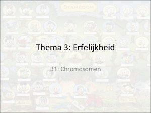 Thema 3 Erfelijkheid B 1 Chromosomen Thema 3