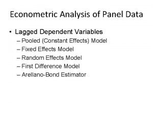 Econometric Analysis of Panel Data Lagged Dependent Variables