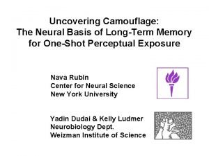 Uncovering Camouflage The Neural Basis of LongTerm Memory