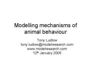 Modelling mechanisms of animal behaviour Tony Ludlow tony