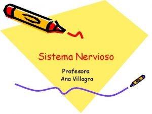 Sistema Nervioso Profesora Ana Villagra Hola soy Cerebro