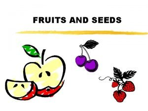FRUITS AND SEEDS Fruits z Part of sexual