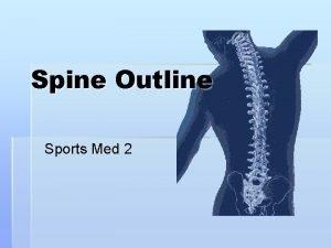 Spine Outline Sports Med 2 Anatomy Bones of