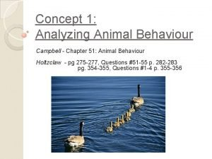 Concept 1 Analyzing Animal Behaviour Campbell Chapter 51