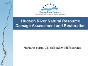 Hudson River Natural Resource Damage Assessment and Restoration