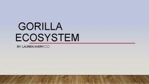 GORILLA ECOSYSTEM BY LAUREN AVERY MINI GLOSSARY Ecosystem