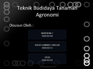 Teknik Budidaya Tanaman Agronomi Disusun Oleh NURDIANA C