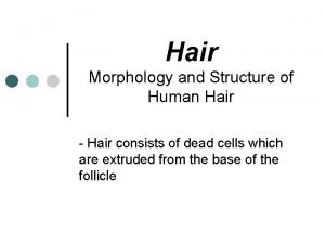 Hair Morphology and Structure of Human Hair Hair