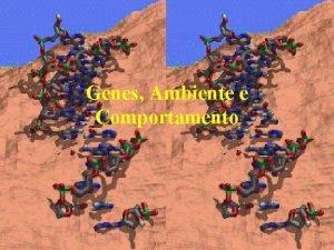 Genes Ambiente e Comportamento Genes e Ambiente Genes