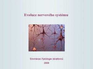 Evoluce nervovho systmu Srovnvac fyziologie obratlovc 2008 Kopinatec