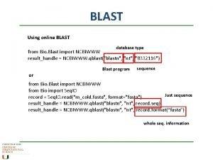 BLAST Using online BLAST database type from Bio
