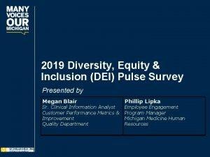 2019 Diversity Equity Inclusion DEI Pulse Survey Presented