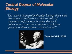 Central Dogma of Molecular Biology The central dogma