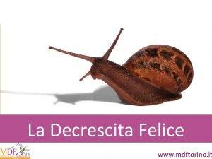 La Decrescita Felice www mdftorino it Societ fondata