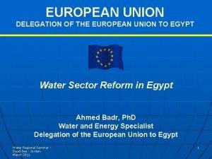 EUROPEAN UNION DELEGATION OF THE EUROPEAN UNION TO
