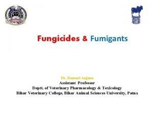 Fungicides Fumigants Dr Kumari Anjana Assistant Professor Deptt