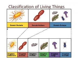 Classification of Living Things Classification is the arrangement