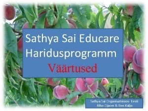 Sathya Sai Educare Tde Haridusprogramm Vrtused Sathya Sai