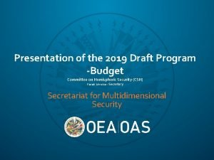 Presentation of the 2019 Draft Program Budget Committee