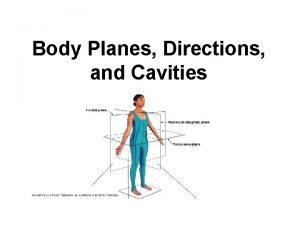 Body Planes Directions and Cavities Body Planes There
