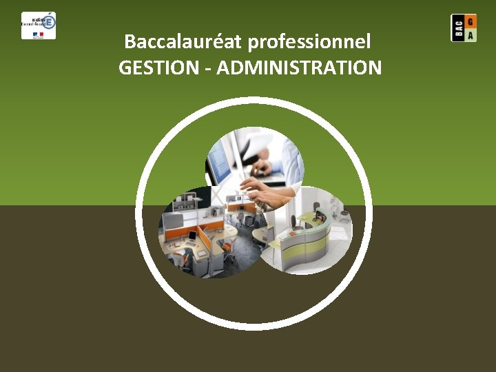 Baccalaurat professionnel GESTION ADMINISTRATION Baccalaurat professionnel GESTION ADMINISTRATION
