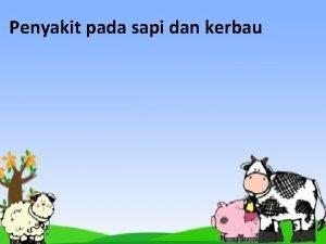 Penyakit pada sapi dan kerbau Penyakit pada sapi