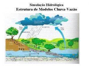 Simulao Hidrolgica Estrutura de Modelos ChuvaVazo Estrutura de