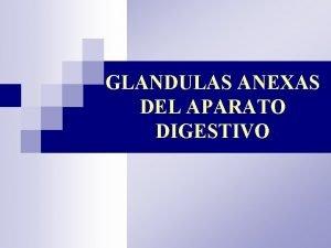 GLANDULAS ANEXAS DEL APARATO DIGESTIVO GLANDULAS ANEXAS 1