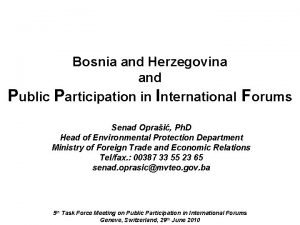 Bosnia and Herzegovina and Public Participation in International