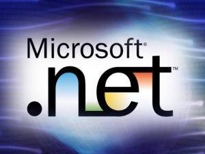 NET Framework NET NET Framework Class Libraries Common
