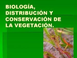 BIOLOGA DISTRIBUCIN Y CONSERVACIN DE LA VEGETACIN Qu