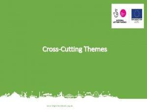 CrossCutting Themes www biglotteryfund org uk 2 Themes