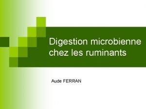 Digestion microbienne chez les ruminants Aude FERRAN Plan