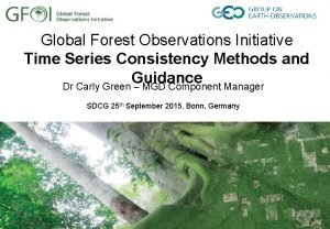 Global Forest Observations Initiative Time Series Consistency Methods