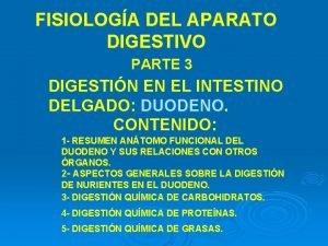 FISIOLOGA DEL APARATO DIGESTIVO PARTE 3 DIGESTIN EN