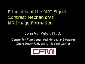 Principles of the MRI Signal Contrast Mechanisms MR